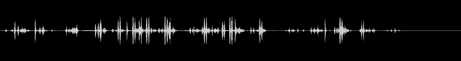 ピンクカクテル(オーストラリア)の未再生の波形