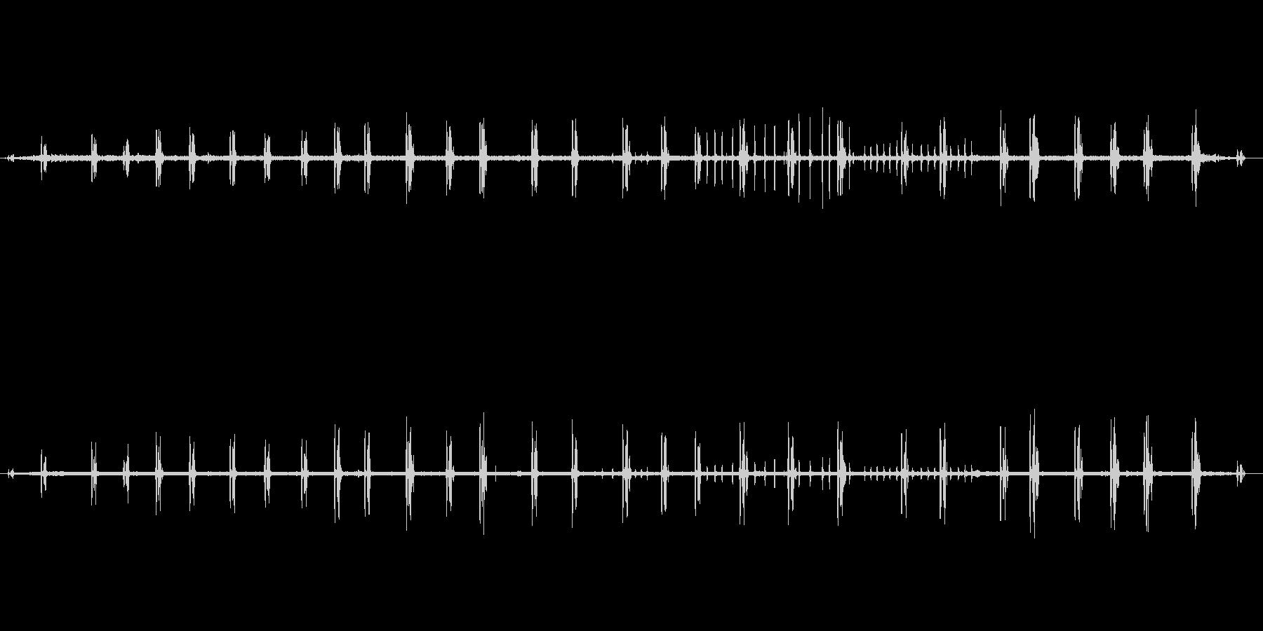 【自然音】朝の風景01(北八ヶ岳)の未再生の波形