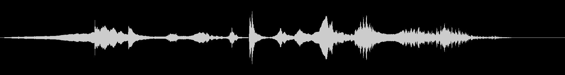 生演奏 尺八 薩摩琵琶 その3 残響音有の未再生の波形