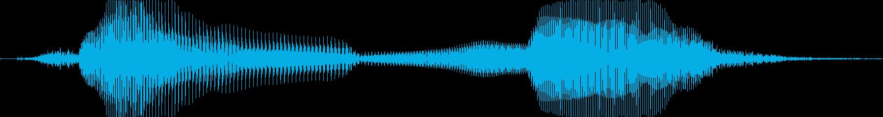 残念…の再生済みの波形