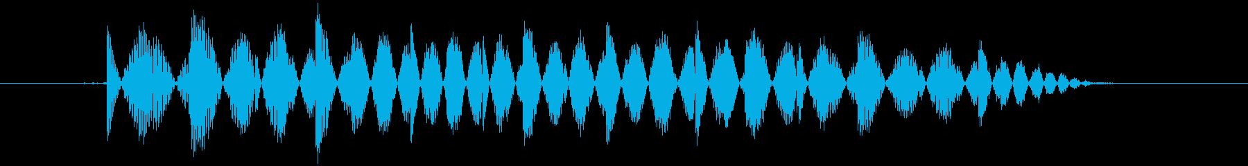 ニュッと何かを取り出すの再生済みの波形