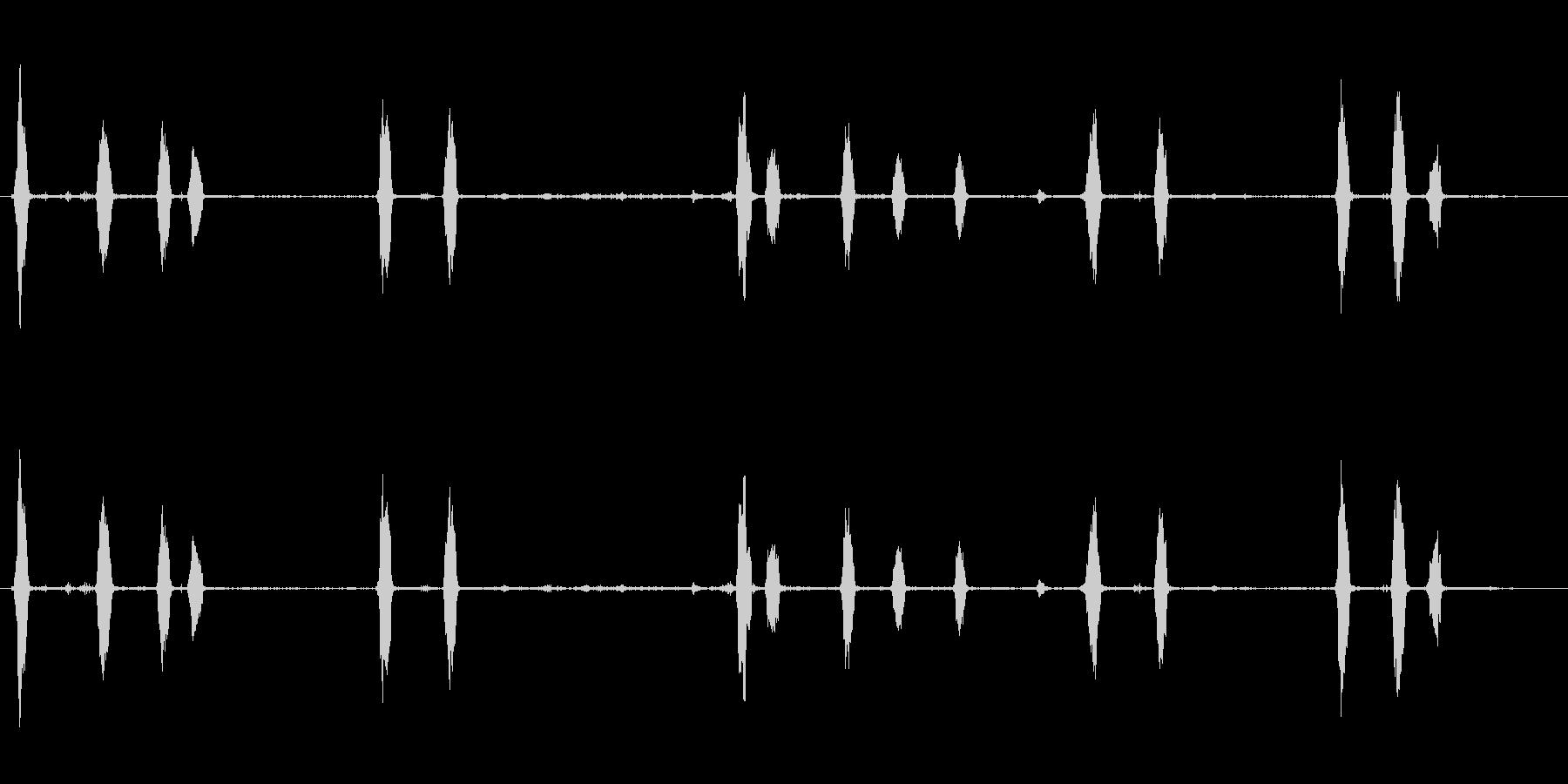 犬、樹皮、近く、屋外; DIGIF...の未再生の波形
