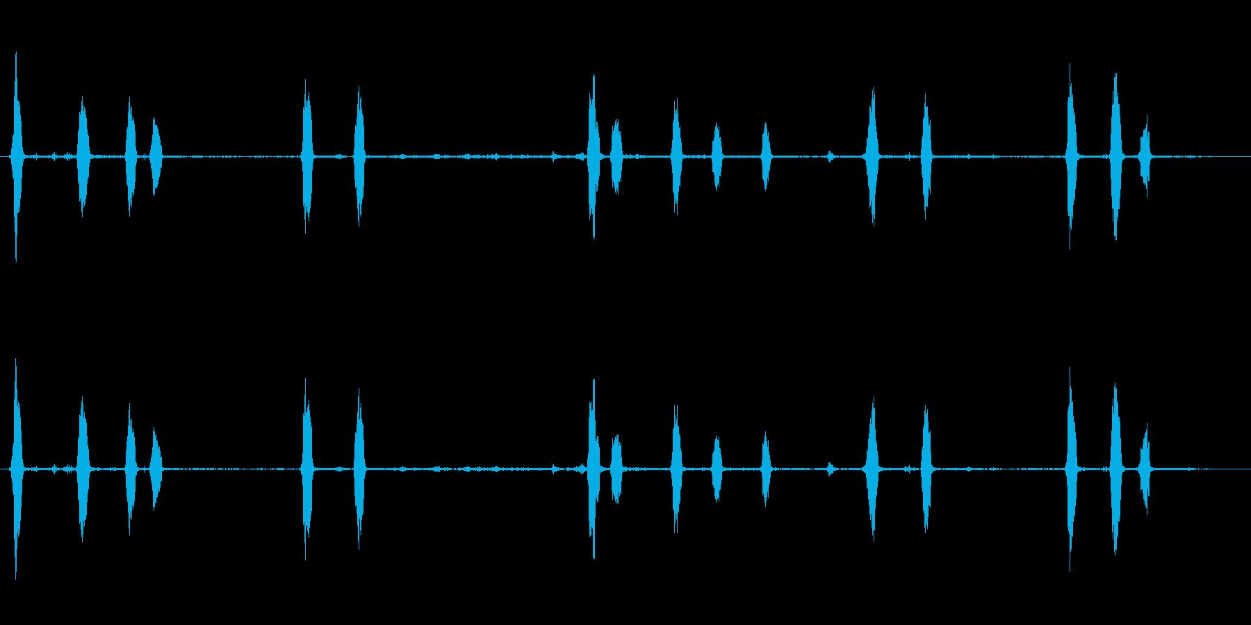 犬、樹皮、近く、屋外; DIGIF...の再生済みの波形