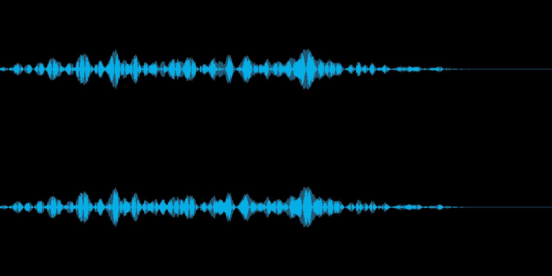 「ぴっ」という鳥の声です。何かをスライ…の再生済みの波形