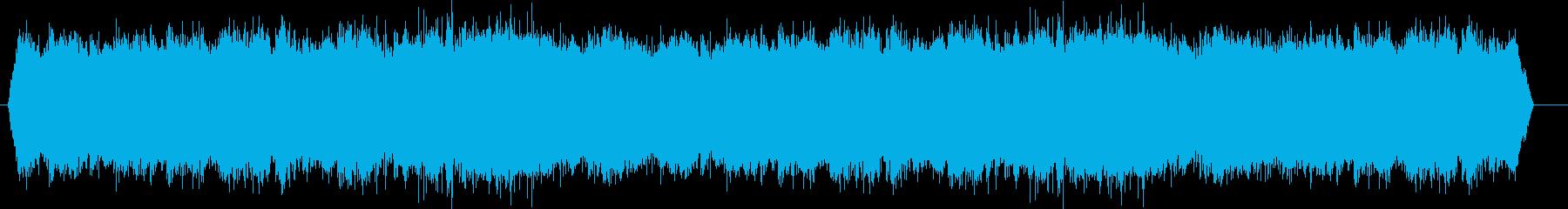 いくつかのセミの連続ラチェット。の再生済みの波形