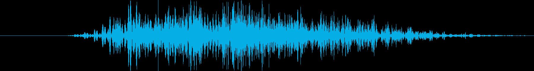 モンスター:クイックローリングスナ...の再生済みの波形