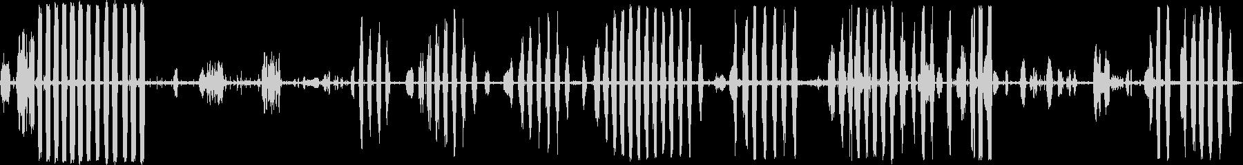 鳥カモメの未再生の波形