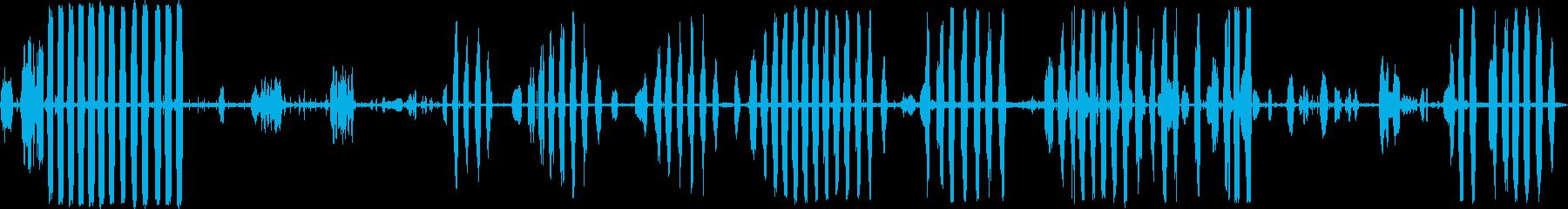 鳥カモメの再生済みの波形