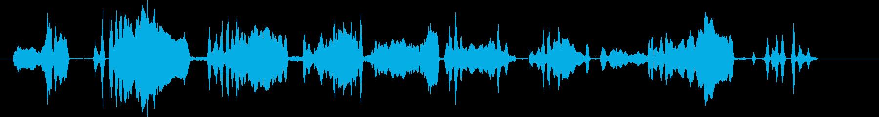 コヨーテハウル。バックグラウンドで...の再生済みの波形