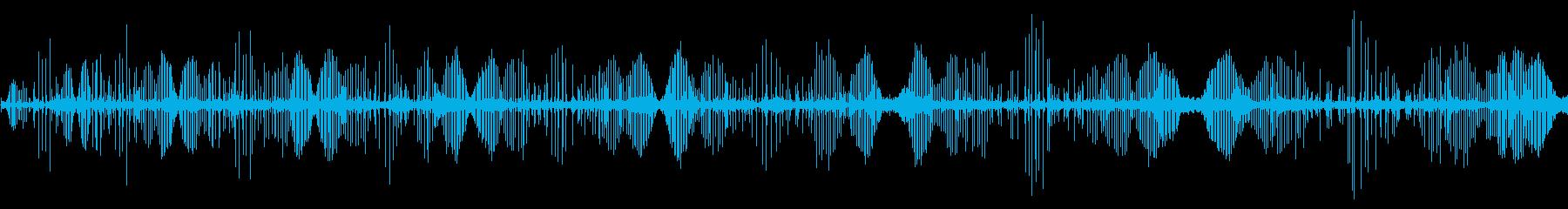 マイクロボット、クリックとチャープ...の再生済みの波形