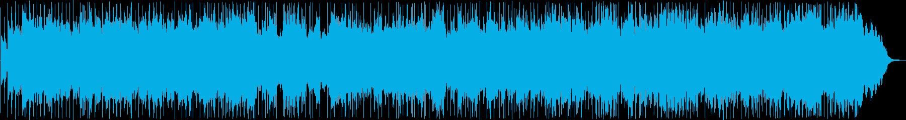 Nakunini / Okinawan folk song's reproduced waveform