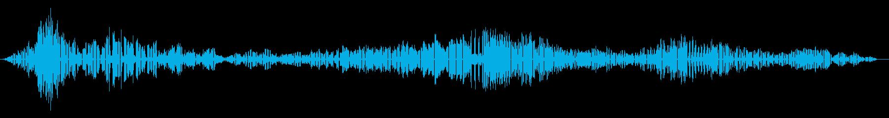 ラーク・バルガー-アロサ・バルガーの再生済みの波形