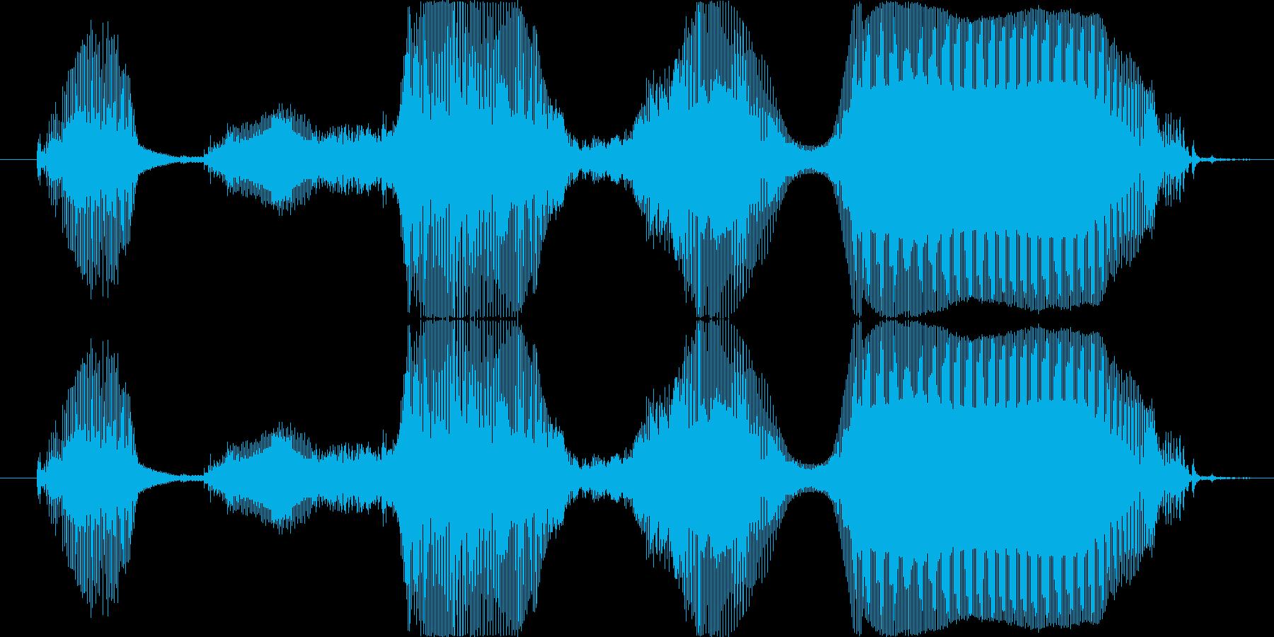 2~3歳女の子 「ごちそうさまー」の再生済みの波形