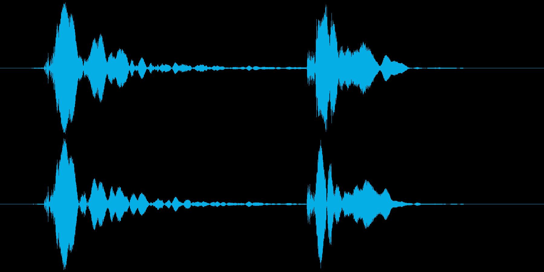 ピコピコハンマー ピコッ (低め)の再生済みの波形