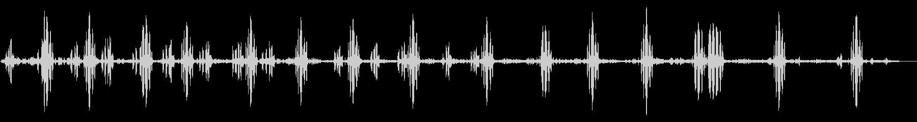 アンビエント鳥の歌う昆虫の未再生の波形