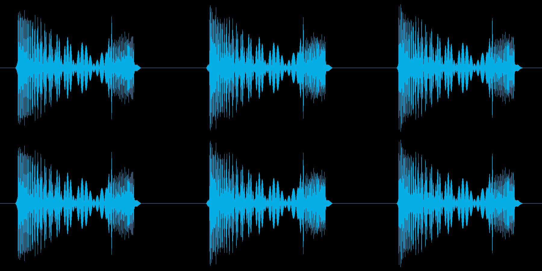 「クワ クワ クワ」「動物等が歩く音」の再生済みの波形
