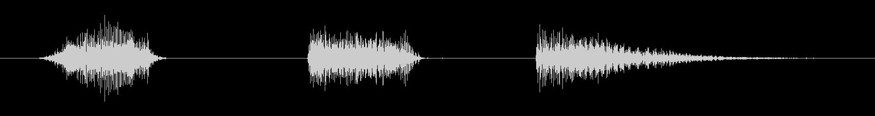 鳴き声 Harrumph Male...の未再生の波形