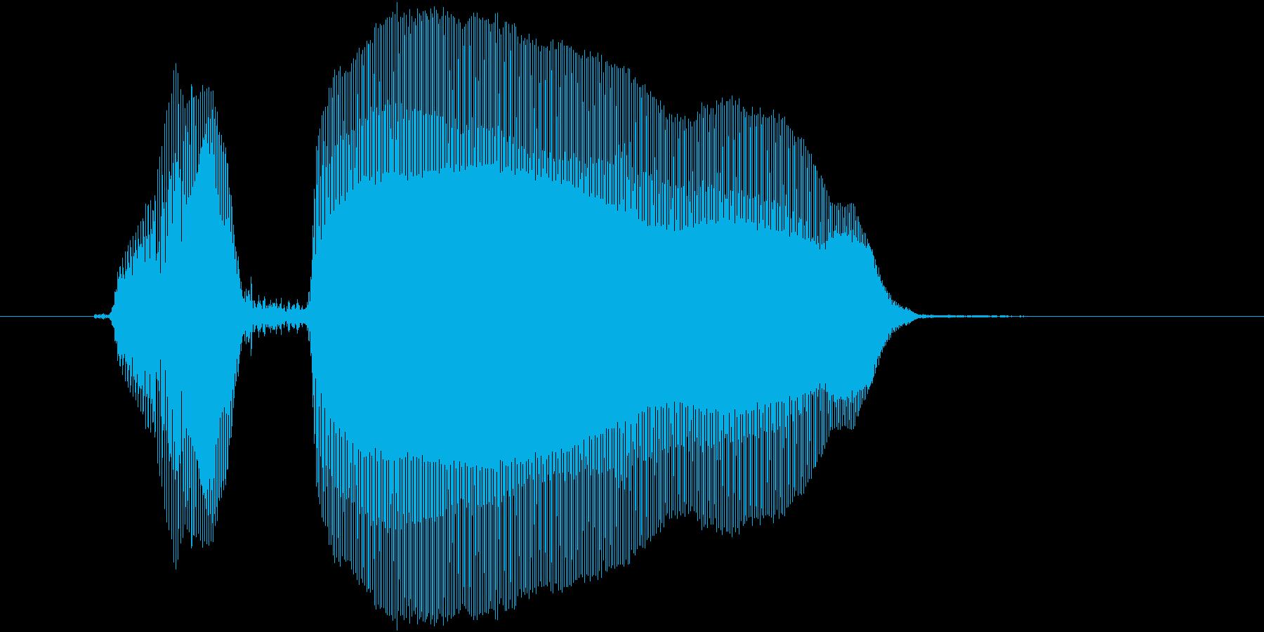 「のほーん」の再生済みの波形