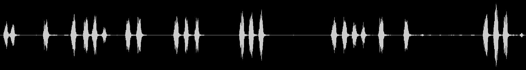 小型犬、ヤッピーバーキング、B / G犬の未再生の波形