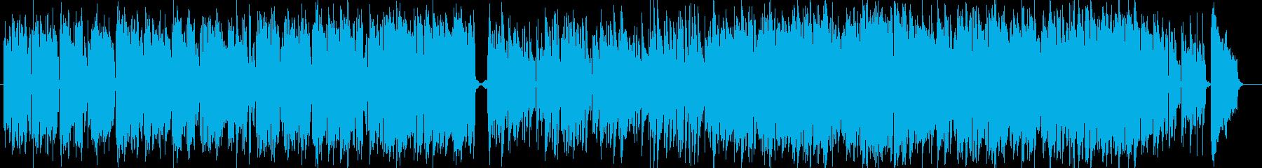 Accordion is fashionable Bossa Nova's reproduced waveform