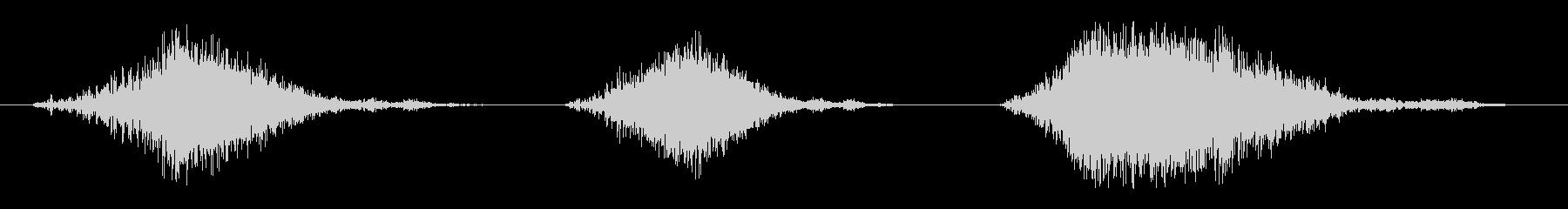 いくつかの遅いライオンのar音の要素の未再生の波形