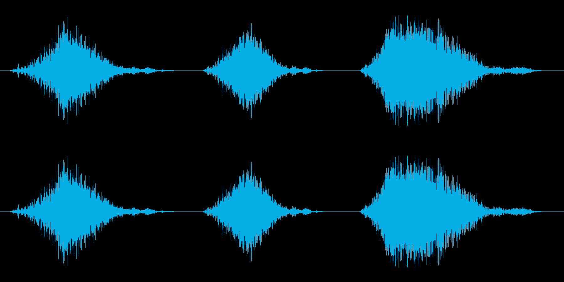 いくつかの遅いライオンのar音の要素の再生済みの波形