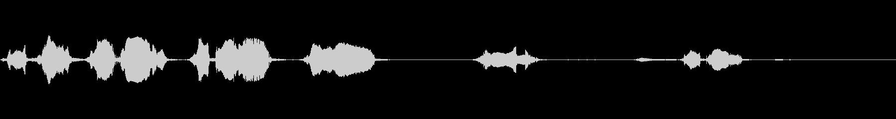 大西洋のイルカ:鳴き声、動物クジラ...の未再生の波形