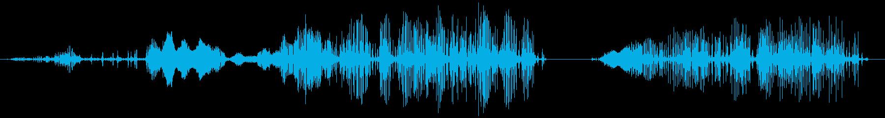 エイリアンラットの鳴き声、SCI ...の再生済みの波形
