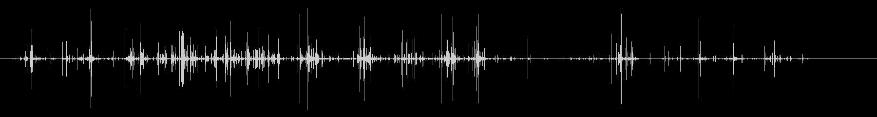 パインコーン:長い処理クラックルの未再生の波形