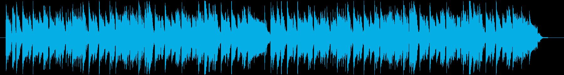 ワールド 民族 トロピカル アクテ...の再生済みの波形