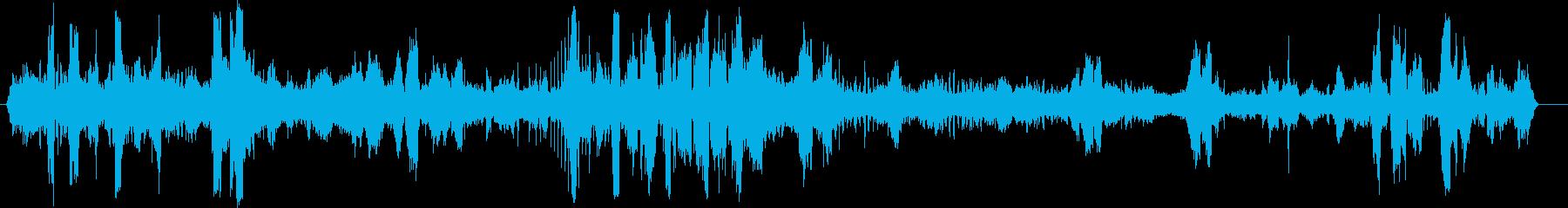 アザラシ、ケープファーバークス。赤...の再生済みの波形