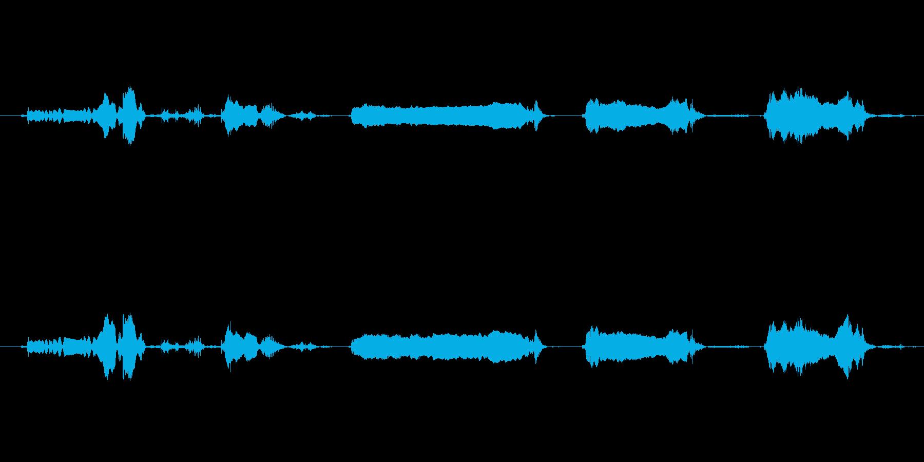 犬 GSP ワインロング02の再生済みの波形