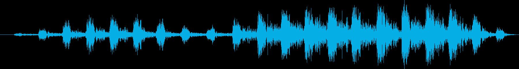 超音波ソノグラフ:コンスタント、病...の再生済みの波形