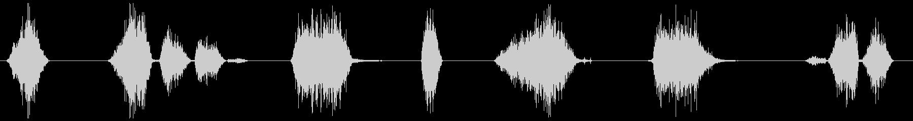 マジックペン (書く)長め文字、サイン等の未再生の波形