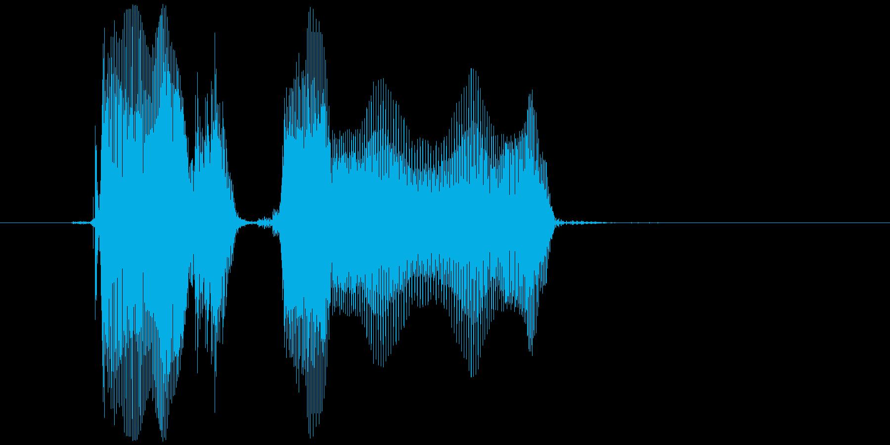 「どうしたの?」の再生済みの波形
