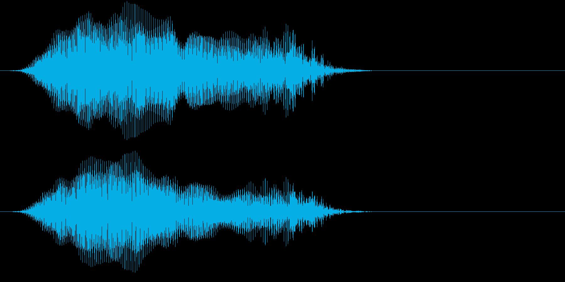 「猫の鳴き声010」なーおver2の再生済みの波形