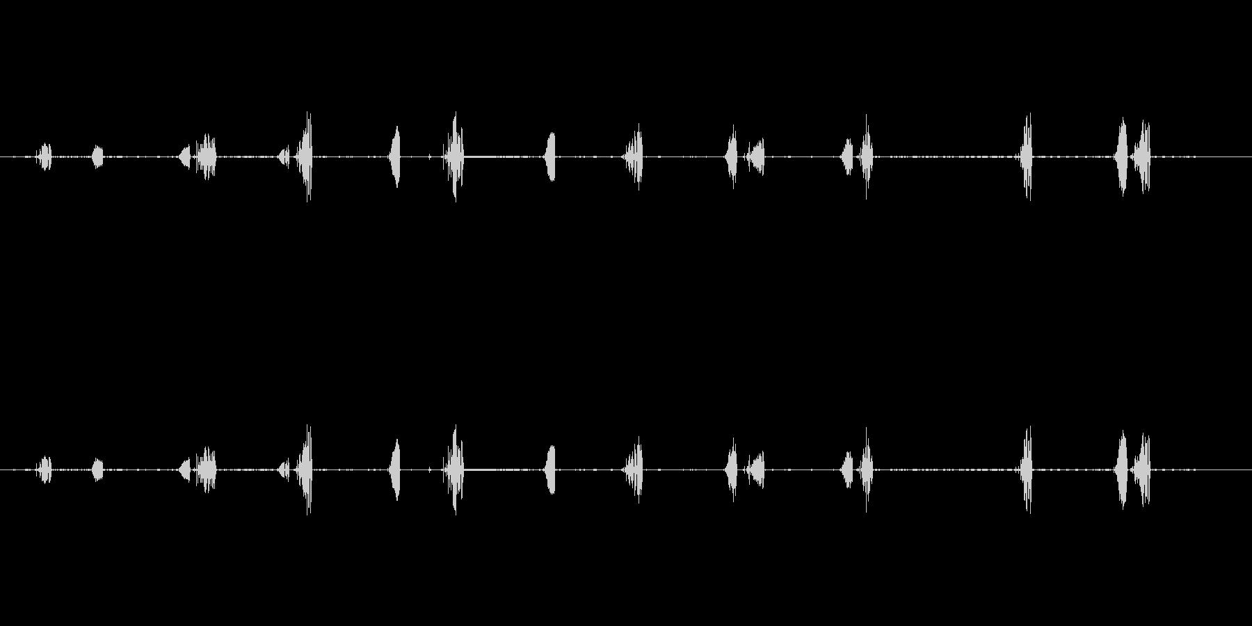 鳥-レッドスタートブラック(ルージ...の未再生の波形