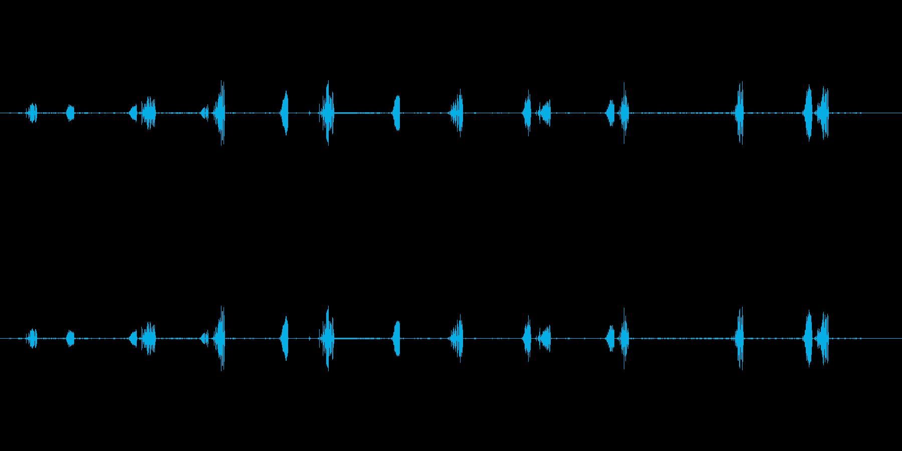 鳥-レッドスタートブラック(ルージ...の再生済みの波形