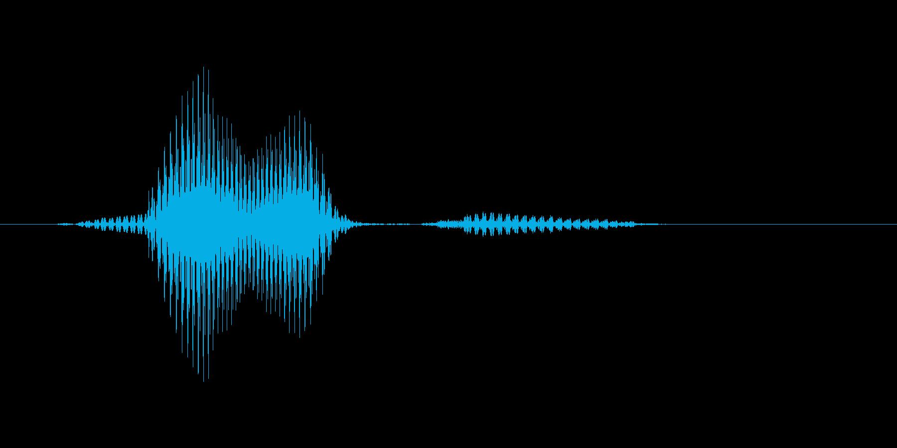 ルーキーの再生済みの波形