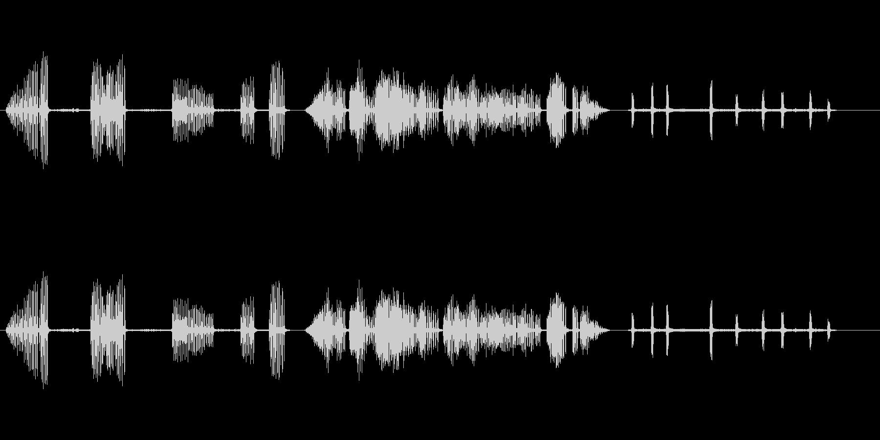 カササギ1の未再生の波形
