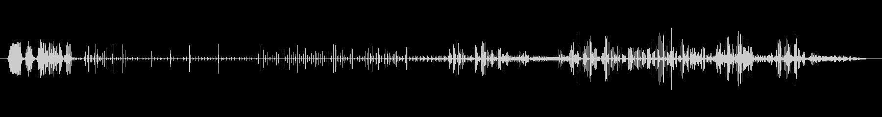 ノイズ オーガニックグリッチライザー03の未再生の波形