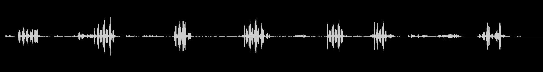 赤いフクロウ-STRIX ALUC...の未再生の波形
