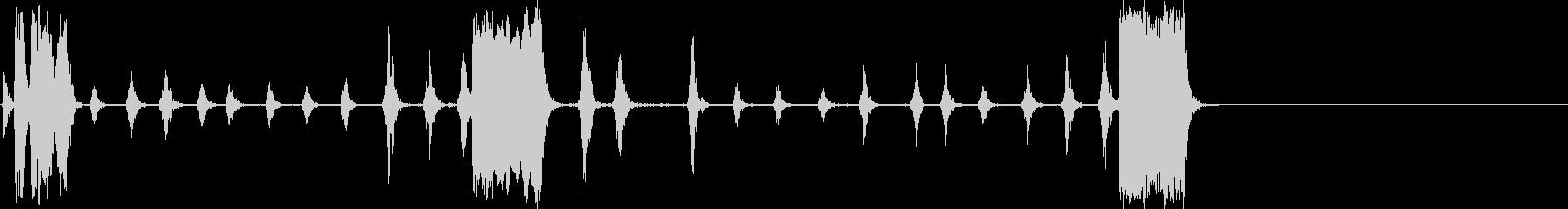ガリーナ-ロック-パジャロの未再生の波形