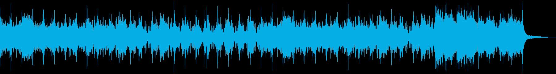 伝統的なアンデス楽器演奏の再生済みの波形