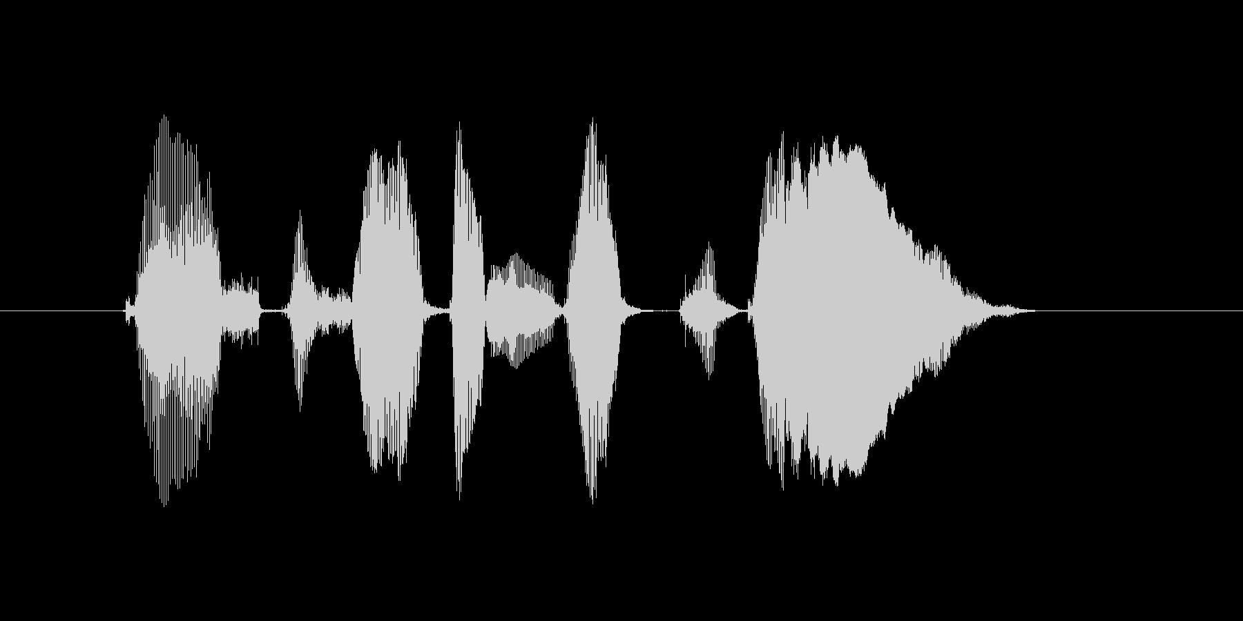 公式サイトにレッツゴーの未再生の波形