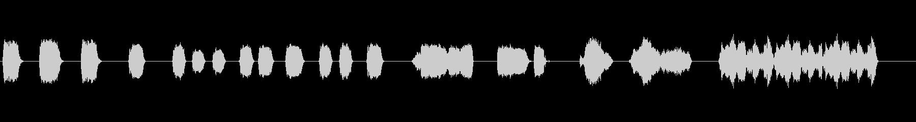 象の未再生の波形