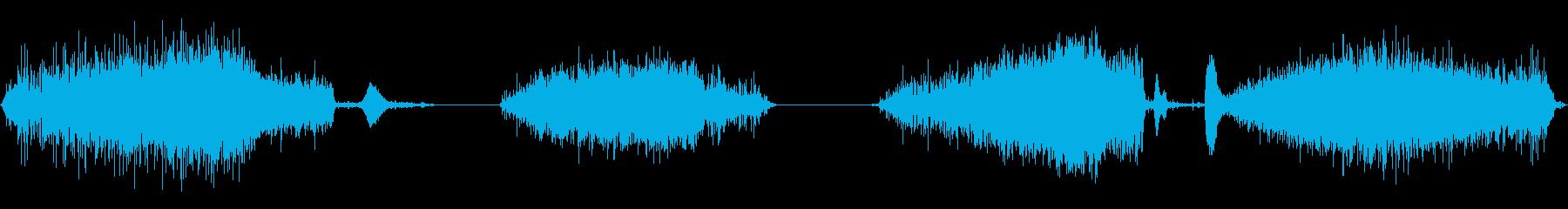 赤ちゃんハゲタカの巣でシューという音の再生済みの波形