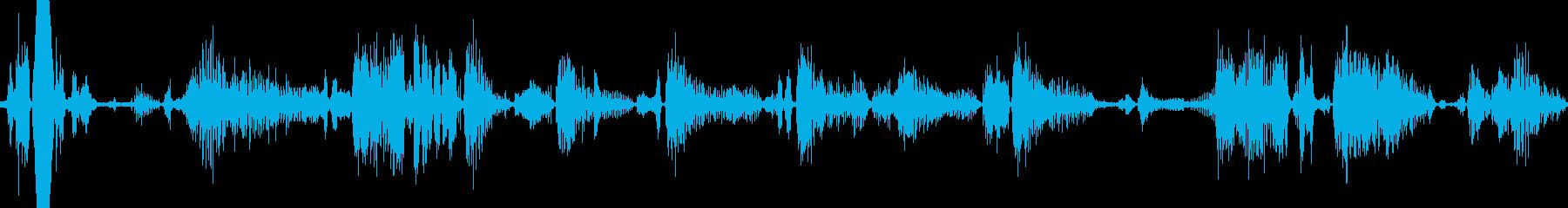 タイガーロアアンドグロールアイドル...の再生済みの波形