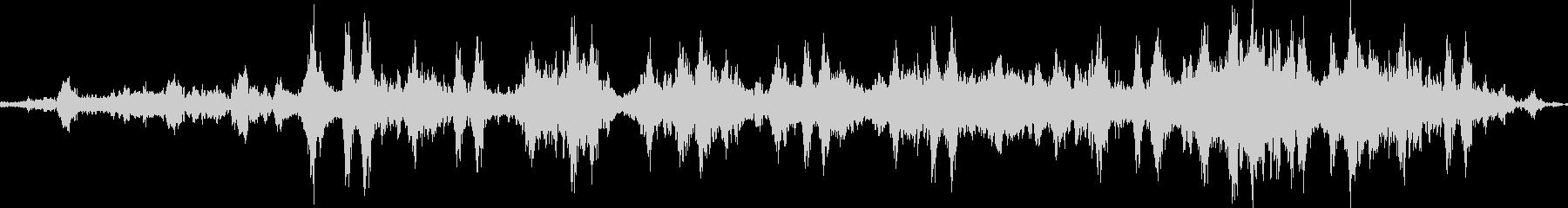 クジラの歌のプロトタイプの未再生の波形