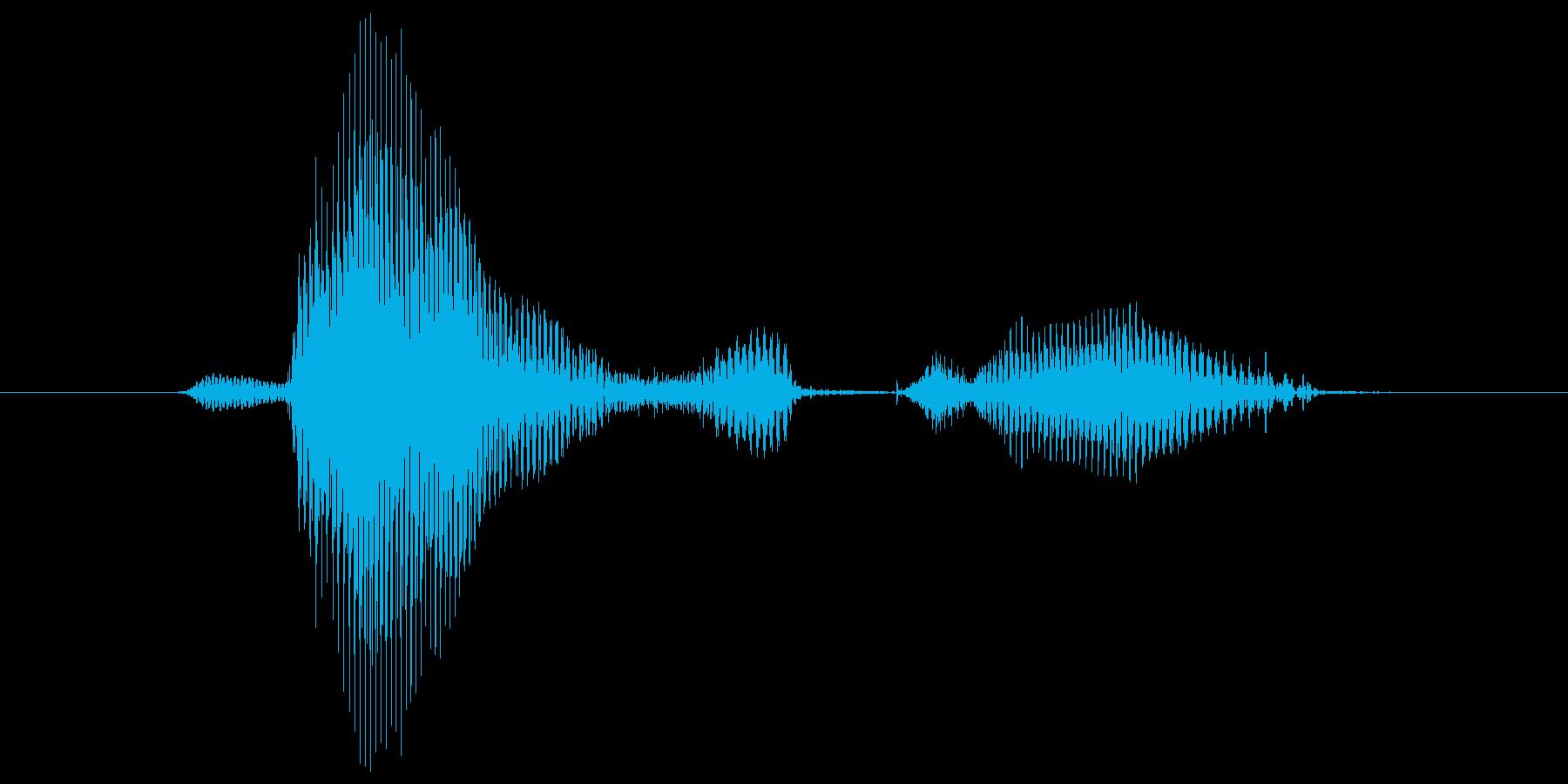 第八問の再生済みの波形